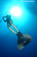 freediving monofin dolphin carbon